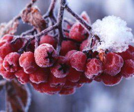 Сезонные расклады и праздники