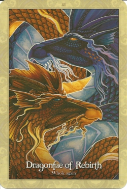 Card41